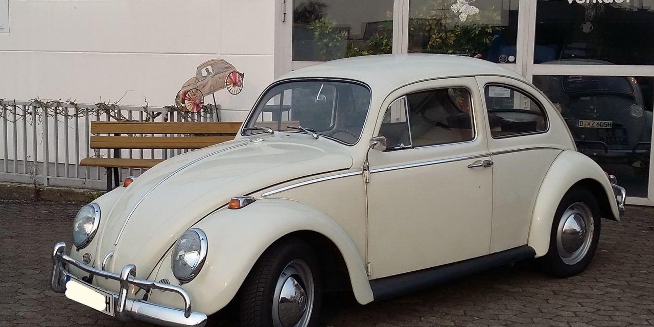 VW Käfer 1200 Export