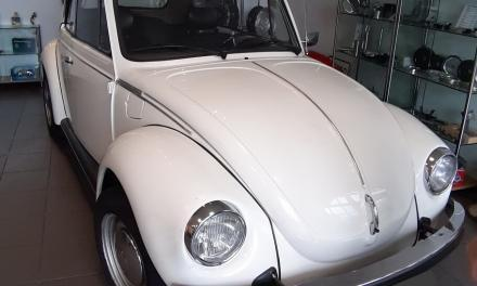 1303 Cabrio – Restaurationsbasis